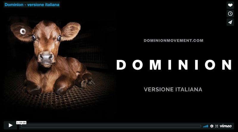 Dominion movement: il film che denuncia la violenza sugli animali